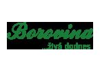Borovina živá do dnes